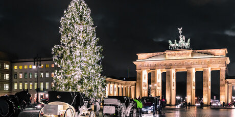 Christmas tree and carriages in front of the Brandenburg Gate in Berlin