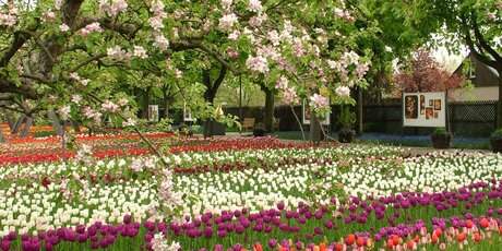 Garten berlin  Britzer Garten | visitBerlin.de