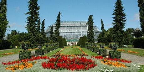 Garten berlin  Botanisches Museum (Botanical Museum) | visitBerlin.de