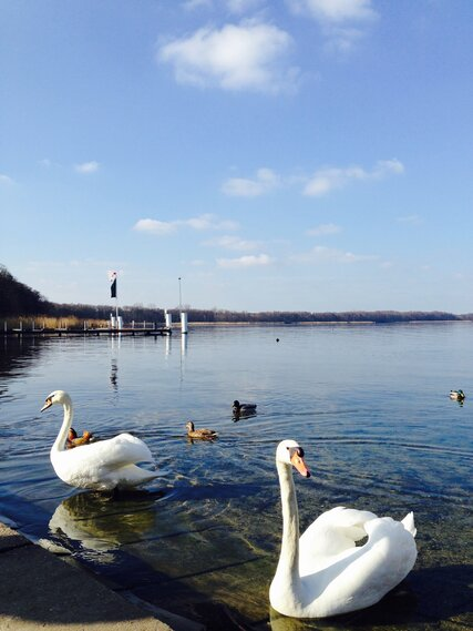 Müggelsee in Berlin