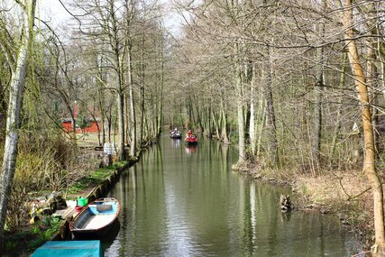 Canal in the Spree Forest
