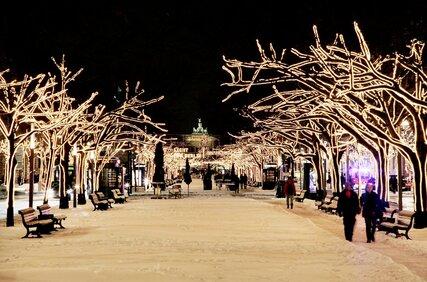 Unter den Linden in winter