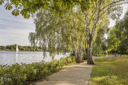 Bike path next to the river Havel in Berlin