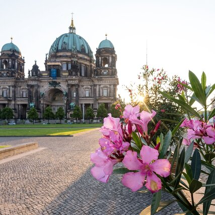 Berliner Cathedral in Berlin