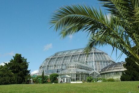 Garten berlin  Botanic Garden and Botanical Museum | visitBerlin.de