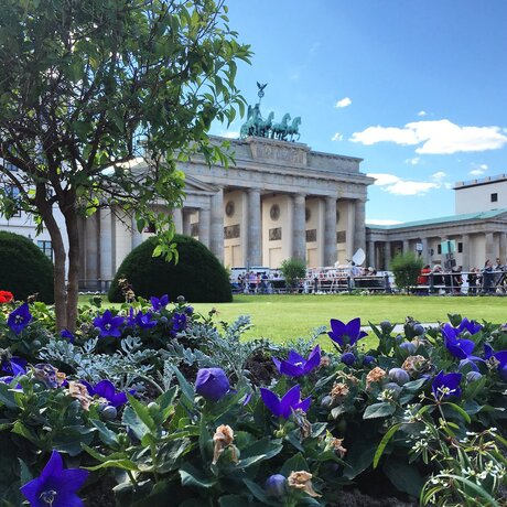 Brandenburg gate in Berlin: Brandenburg Gate with flowers and sky