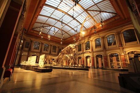 Museum für Naturkunde (Museum of Natural History