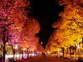 Festival of Lights - Autumn - Unter den Linden