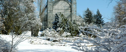 The Botanical Garden in Berlin in winter