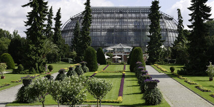 Tropical House at Botanical Garden Berlin