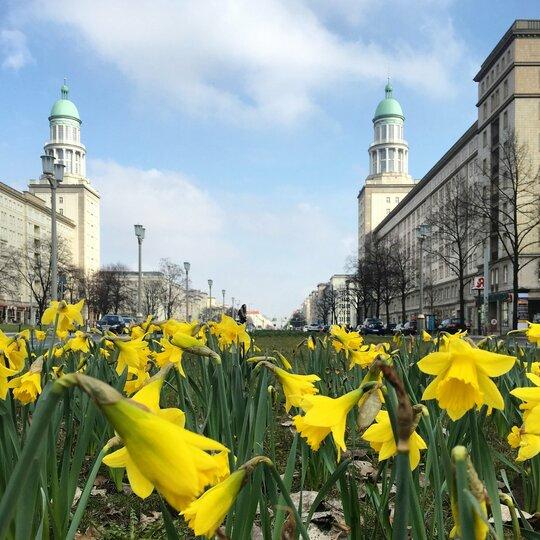 Frühling In Berlin Visitberlinde