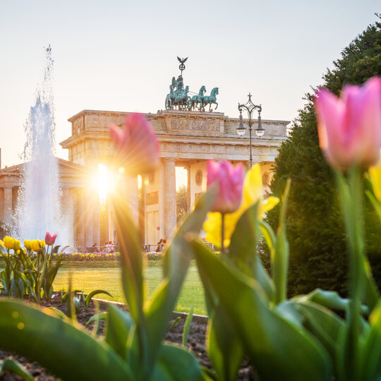 Frühling am Brandenburger Tor in Berlin