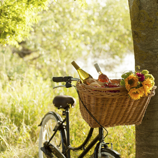 Picknick and bicycle tour in Berlin