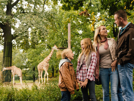Family at Zoologischer Garten Berlin with giraffes