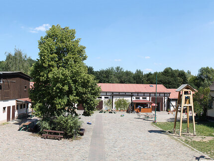 Farms for children | visitBerlin de