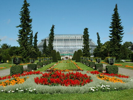 Tropical House-Botanisches Museum
