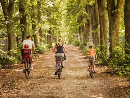 family on bikes in a forest